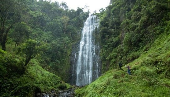 Materuni Waterfall and Coffee Plantation